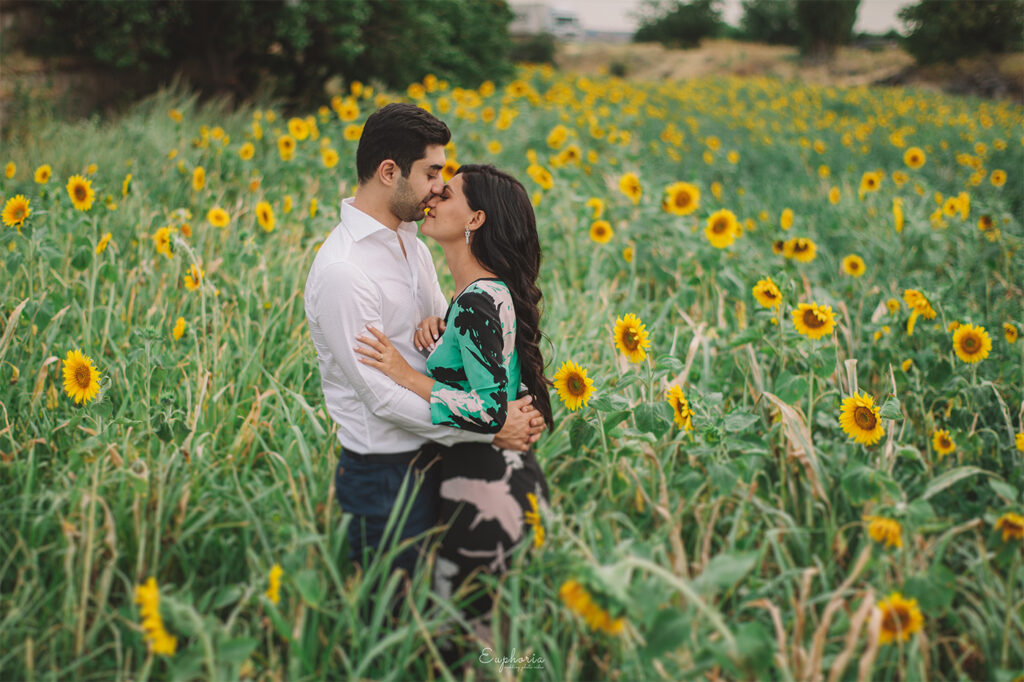 Pre wedding photography in the sunflower valley , Armenia